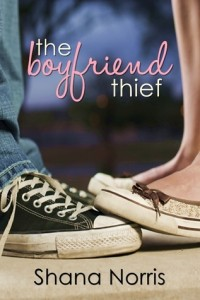 The Boyfriend Thief by Snana Norris
